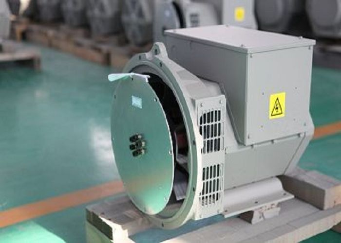 Brushless Single Phase Permanent Magnet Alternator For MTU Generator Set 14KW