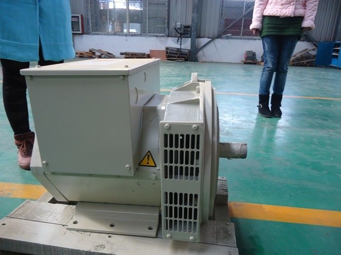 Self-excited Double Bearing Alternator Brushless Generator 200kw / 250kva